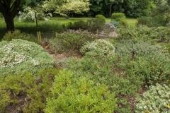 Lovell-Quinta-Arboretum-c-John-Harradine-16