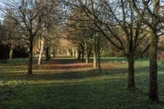 lovell-quinta-arboretum-seasonal-gallery-10